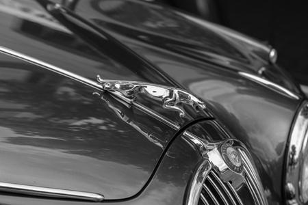 Protección vehicular y PDI